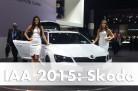Weltpremiere des Skoda Superb Combi Sport Line. Foto: Skoda / die-autotester.com